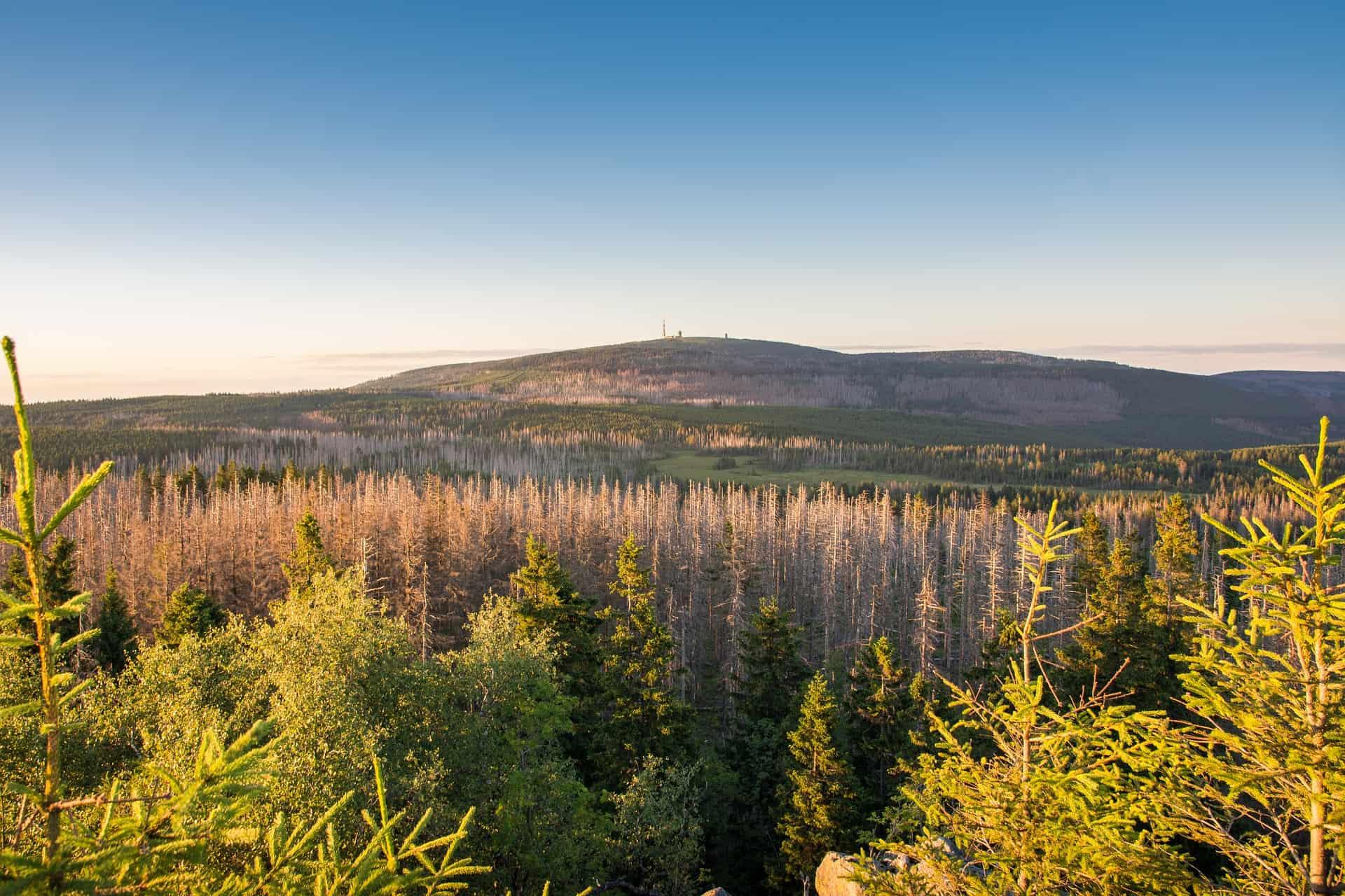 Harzgebirge