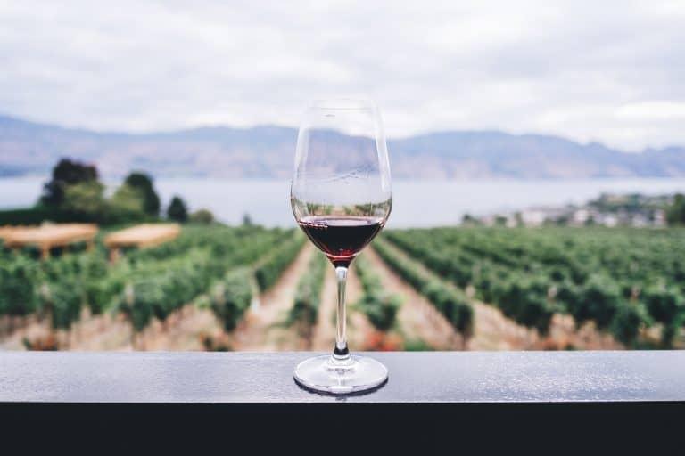 Weinglas auf Geländer vor Aussicht