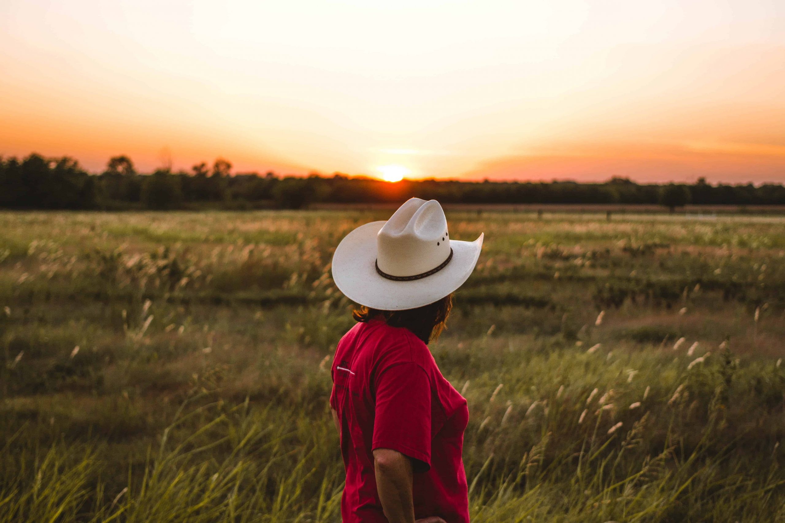 Rundreise Texas: Empfehlungen & Vergleich (04/20)