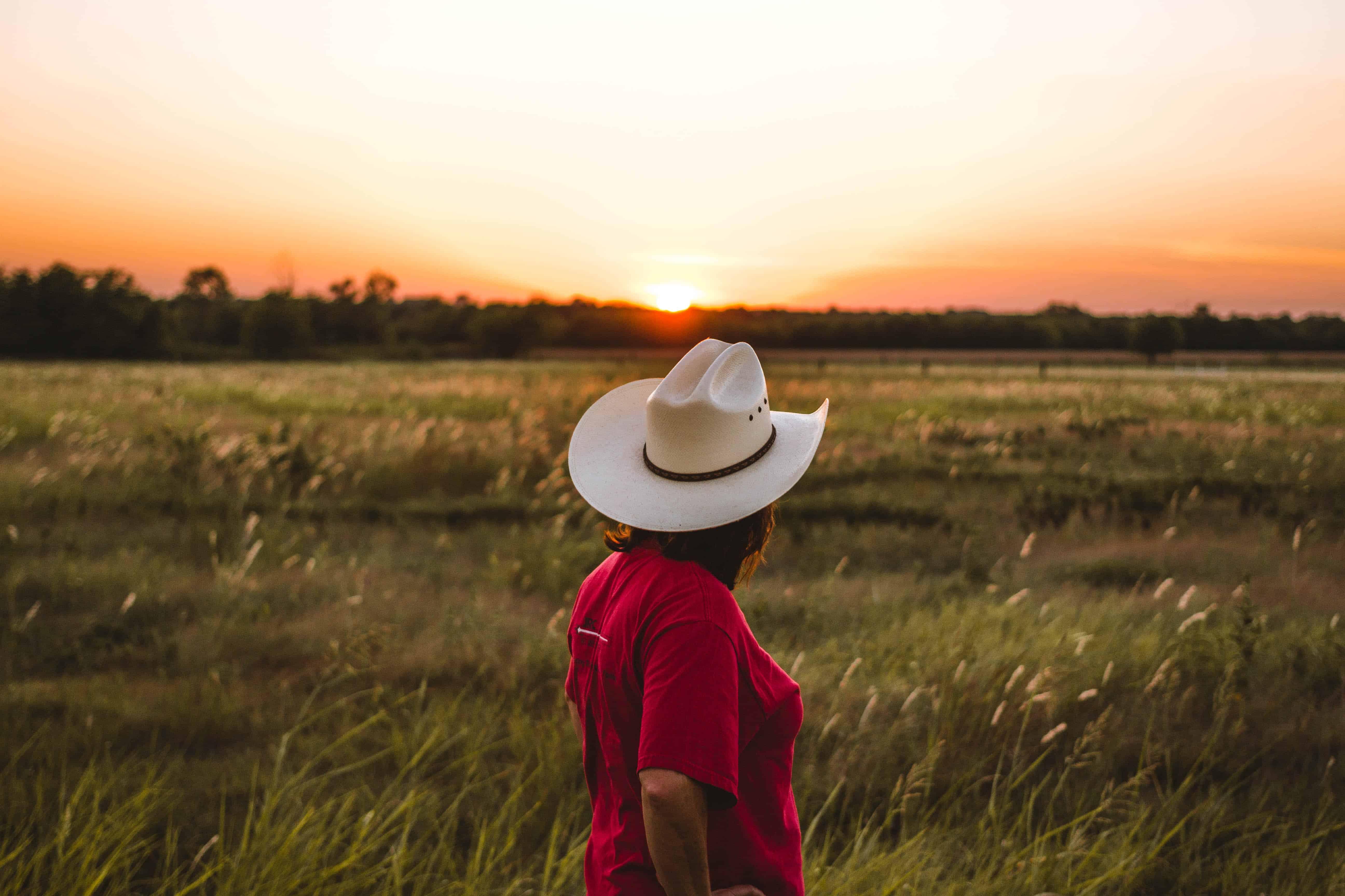 Rundreise Texas: Empfehlungen & Vergleich (01/20)