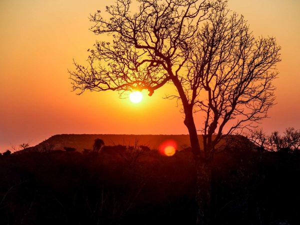 Rundreise Madagaskar: Empfehlungen & Vergleich (01/20)