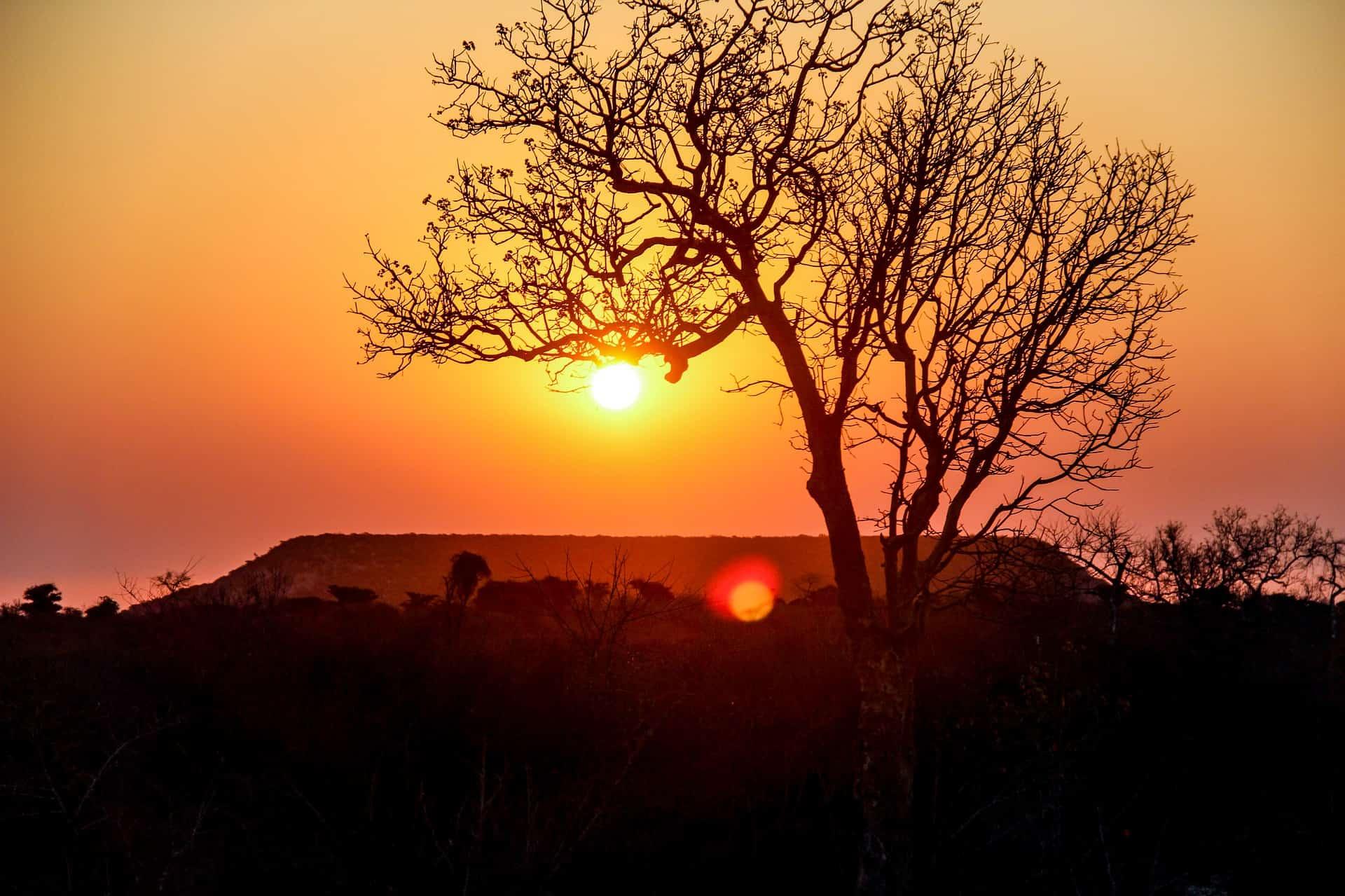 Rundreise Madagaskar: Empfehlungen & Vergleich (04/20)