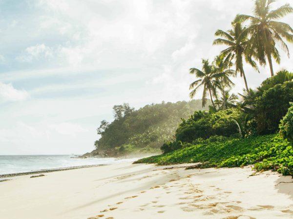 Rundreise Seychellen: Empfehlungen & Vergleich (01/20)