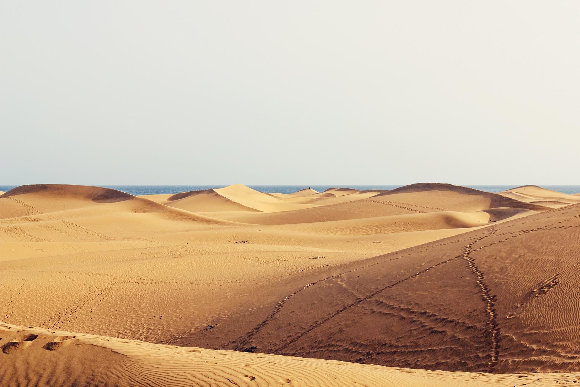 Rundreise Gran Canaria: Empfehlungen & Vergleich (07/20)