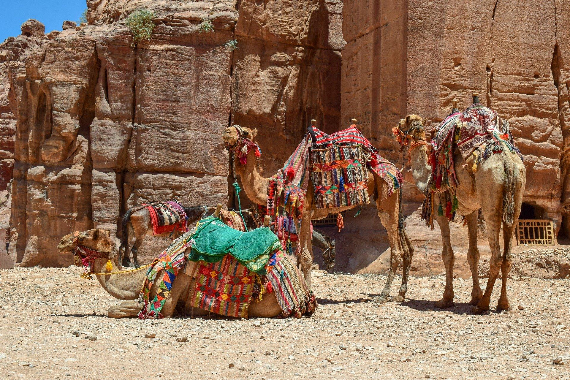 Rundreise Jordanien: Empfehlungen & Vergleich (08/20)