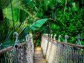 Rundreise Amazonas: Empfehlungen & Vergleich (07/20)